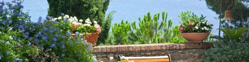 jardin de pot bac et terrasse